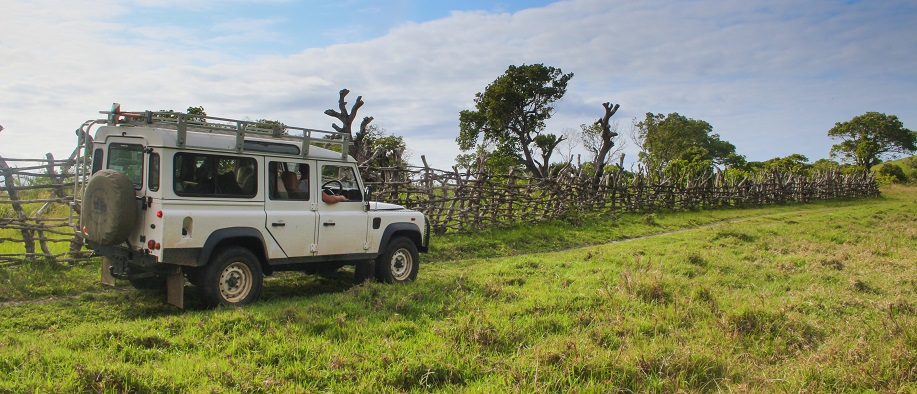 St Luicia South Africa Safari and Surf