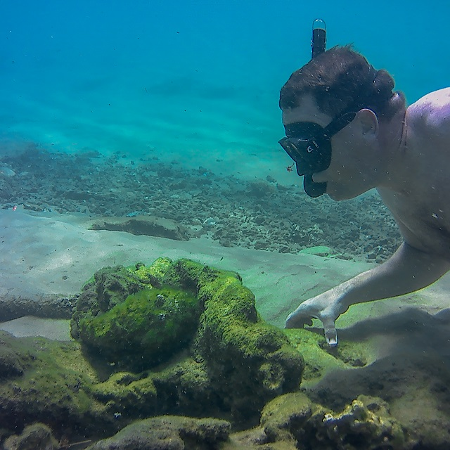 Snorkeling in Kosi bay