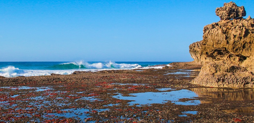 Surf Tours in the kosi bay area