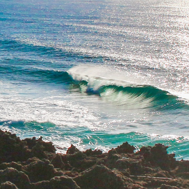 Surfing Adventures and Surfing Lessons from St Lucia South Africa Activities Things to do